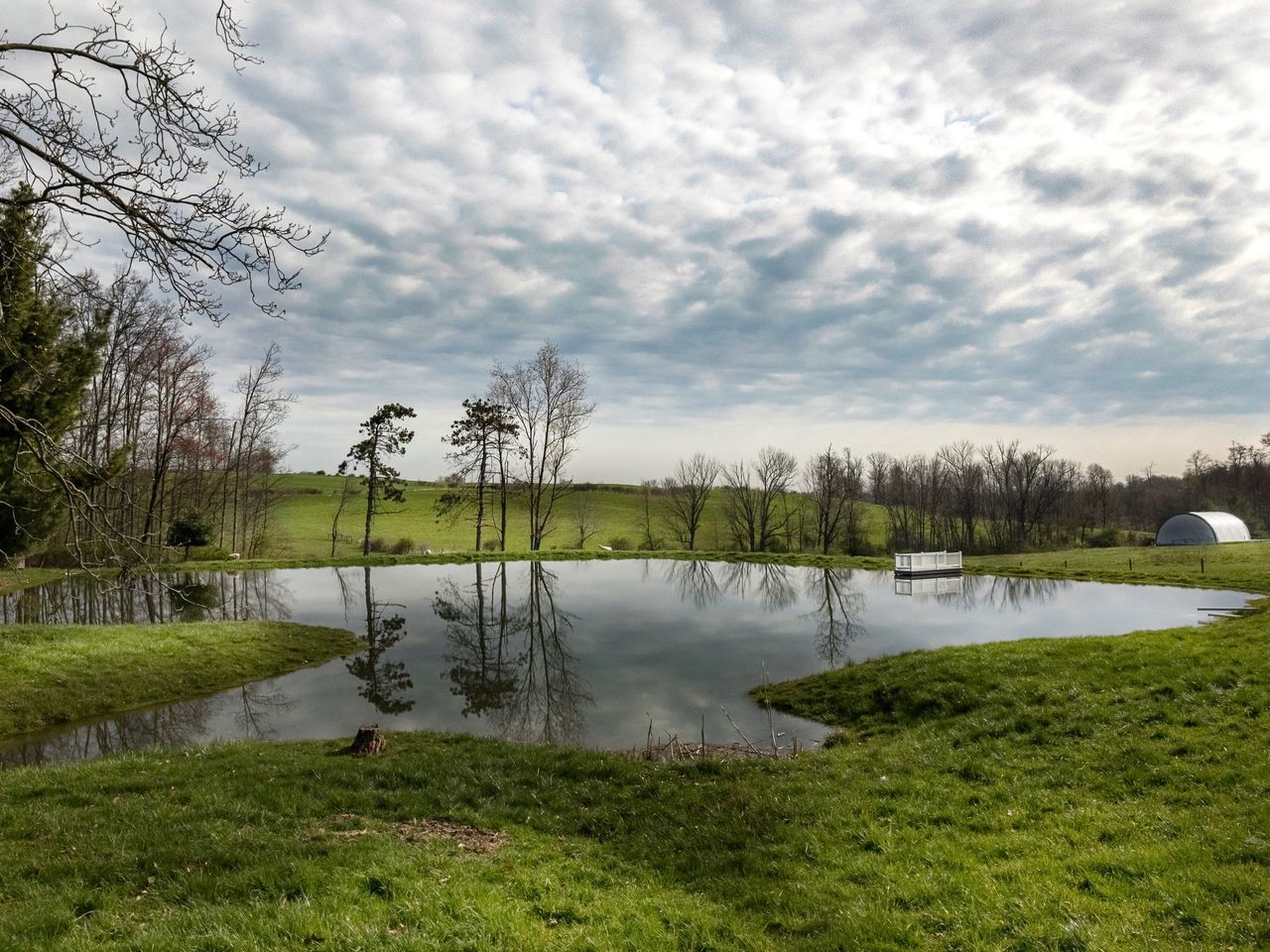 water, grass, lake, tranquility, reflection, nature, tranquil scene, tree, beauty in nature, cloud - sky, scenics, sky, no people, outdoors, green color, day, landscape, growth, bare tree