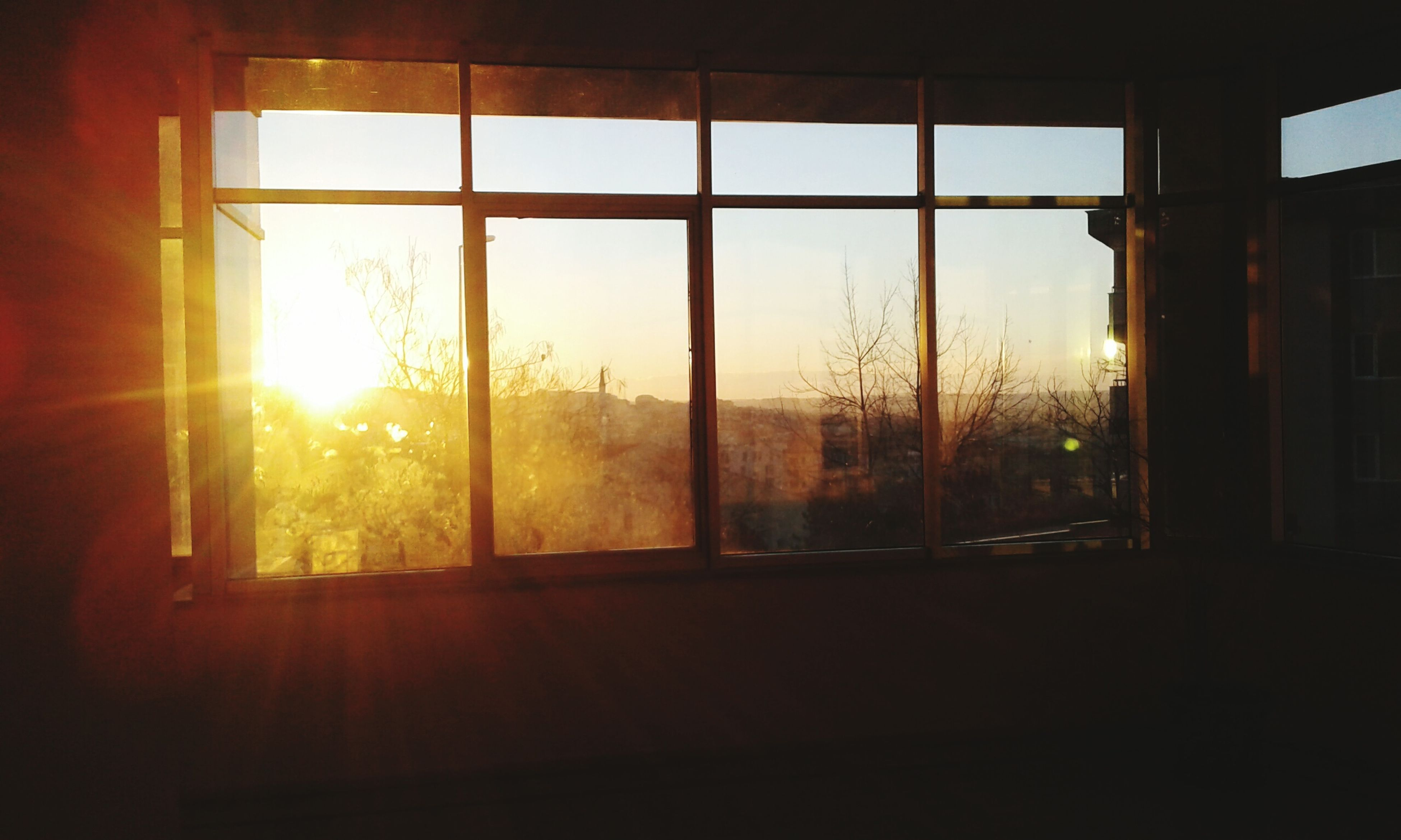 window, glass - material, transparent, indoors, sunlight, sunset, sun, no people, window frame, day, tree, looking through window, sunbeam, nature, sky, close-up, architecture