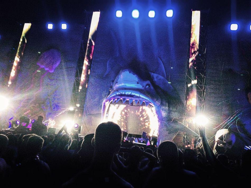 Festival Medusasunbeachfestival Comunidadvalencia Friends Music Summer Enjoying Life Tiburon  Shark Cullera Nonstop