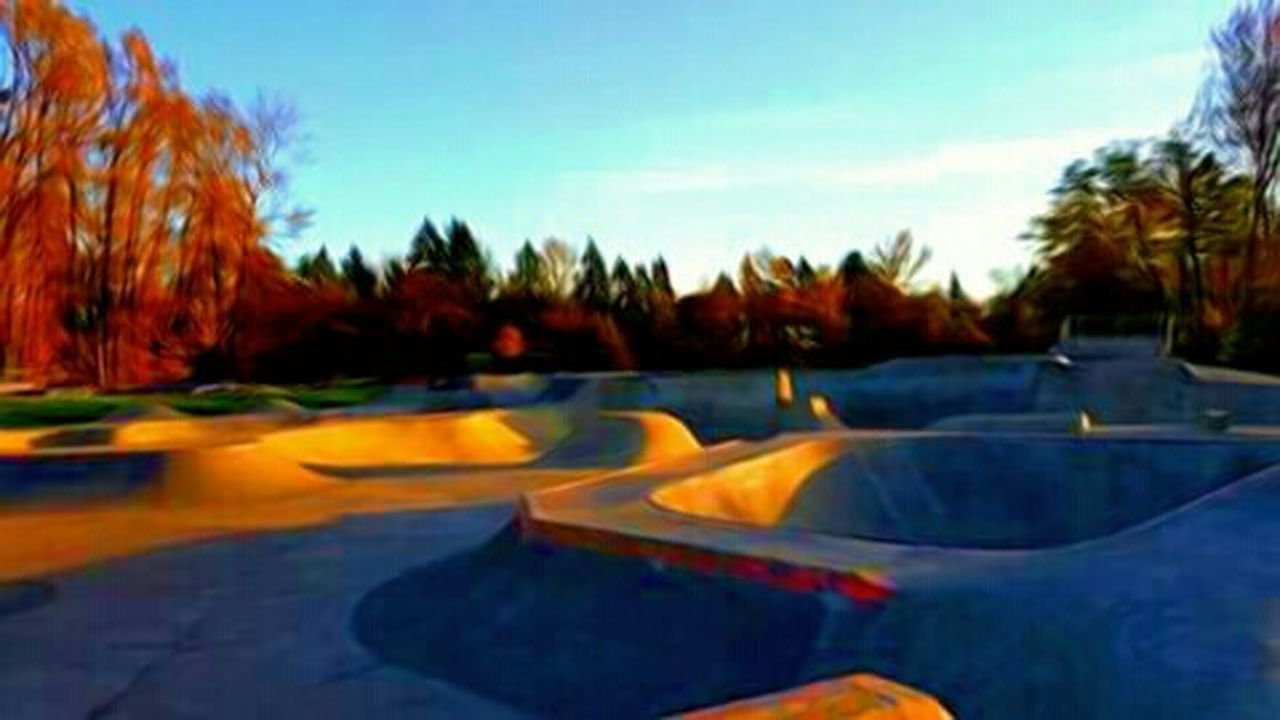 Outdoors Nature Fall Collection Skate Or Die Skate Park Travel Destinations Famous Place Recreational Pursuit West Side Skater Life Popular Place Tonyhawkprovingground Newberg Oregon Shredvibes Take It To The Park Where To Play Skateeverydamnday Wicked Awesome Best Of The Best Outdoors Photograpghy  The Week On EyeEem Vote For HillaryClinton Telling Stories Differtenly Rail Transportation The Way Forward