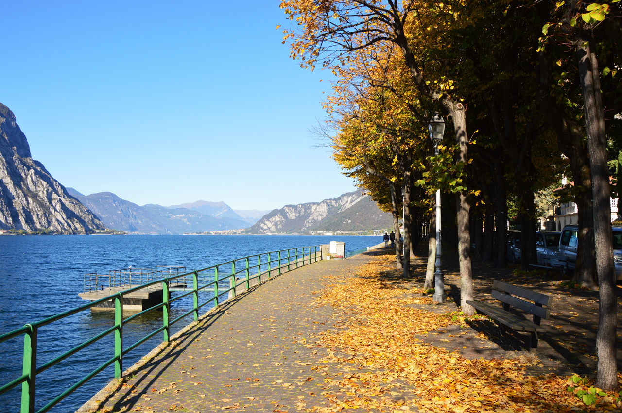 tree, clear sky, water, nature, outdoors, mountain, sea, no people, beauty in nature, scenics, tranquility, day, autumn, sky