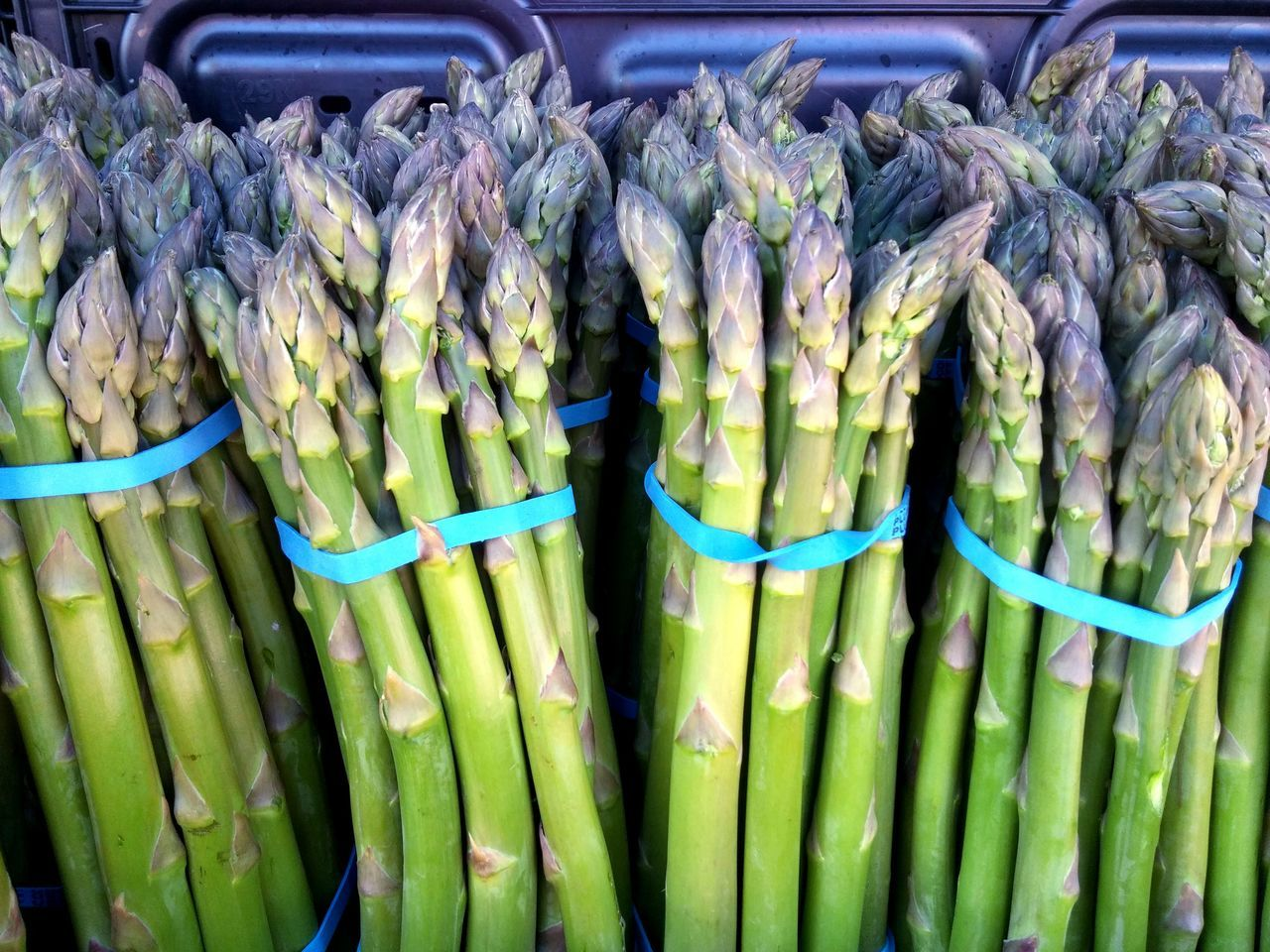 Farmstand Bounty Delicious Summer Farmers Market Healthy Eating All Natural Organic Food Health Food Summer Harvest Organic Healthy Spring Harvest Healthy Lifestyle Asparagus Vegetables Veggies Green Vegetables Food Tasty Freshness Color Palette