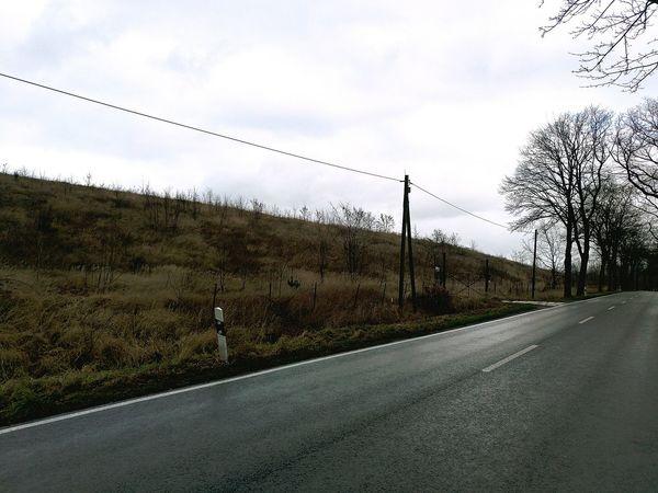 Allee Landschaft Landstrasse Day No People Landschaften Felder Dorf Nature Traveling Home For The Holidays