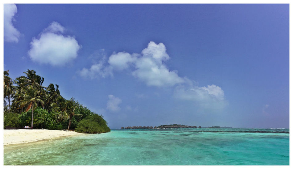 Maldives Panoramic Palm Trees Crystal Clear Waters Blue Sea Sunny And Windy Blue Water Blue Sky Bikini Beach Amazing View Amazing Place EyeEM Beach Photography Reef Life Is A Beach Landscapes With WhiteWall
