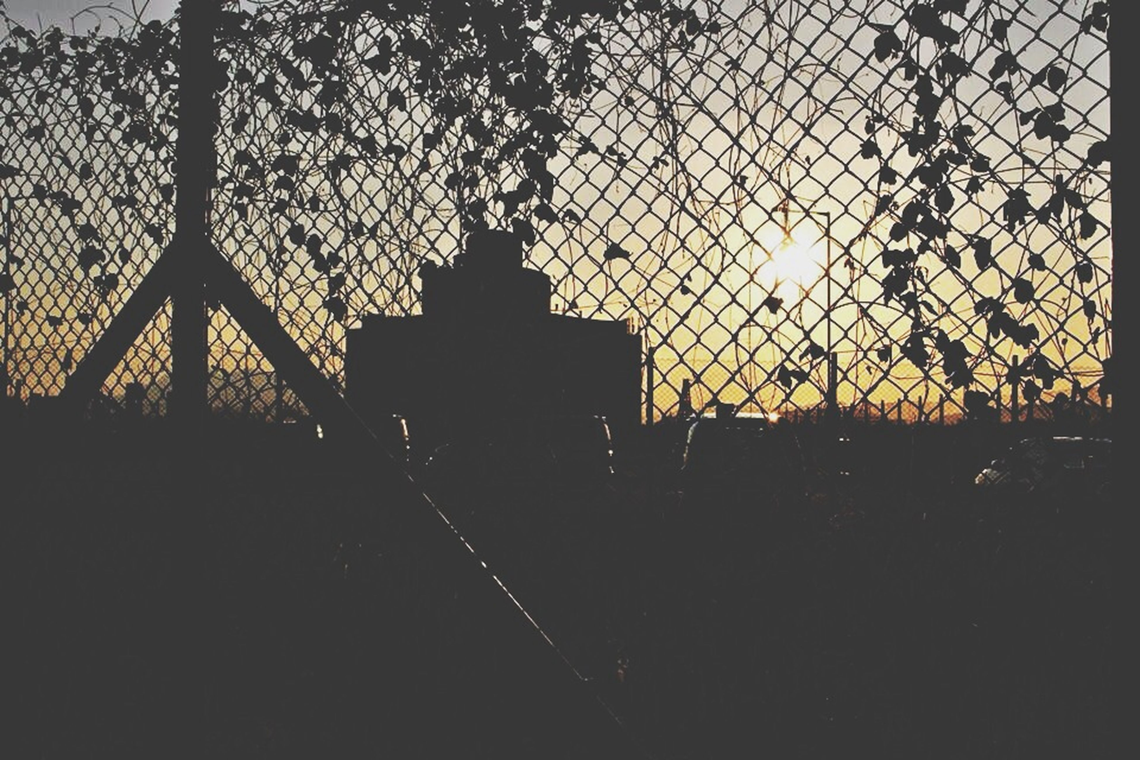 sunset, silhouette, fence, sky, protection, safety, built structure, metal, security, chainlink fence, architecture, orange color, tree, tranquility, no people, outdoors, nature, bare tree, dusk, railing