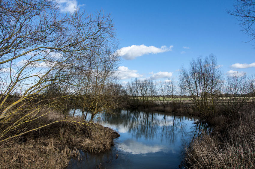 Bare Tree Blue Sky Cold Countryside EyeEm Nature Lover Field Grass House Lake Landscape Light Light Clouds Majestic Non-urban Scene Outdoors Reflections Reflections And Shadows Reflections In The Water Remote Rural Scene Scenics Sky Tranquil Scene Tranquility Tree
