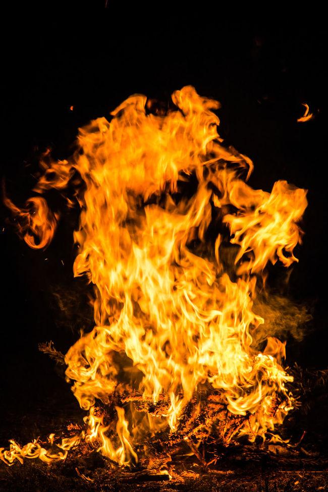 Fire Warm Fockeberg Campfire Campfire#nature# Burning EyeEm Best Shots