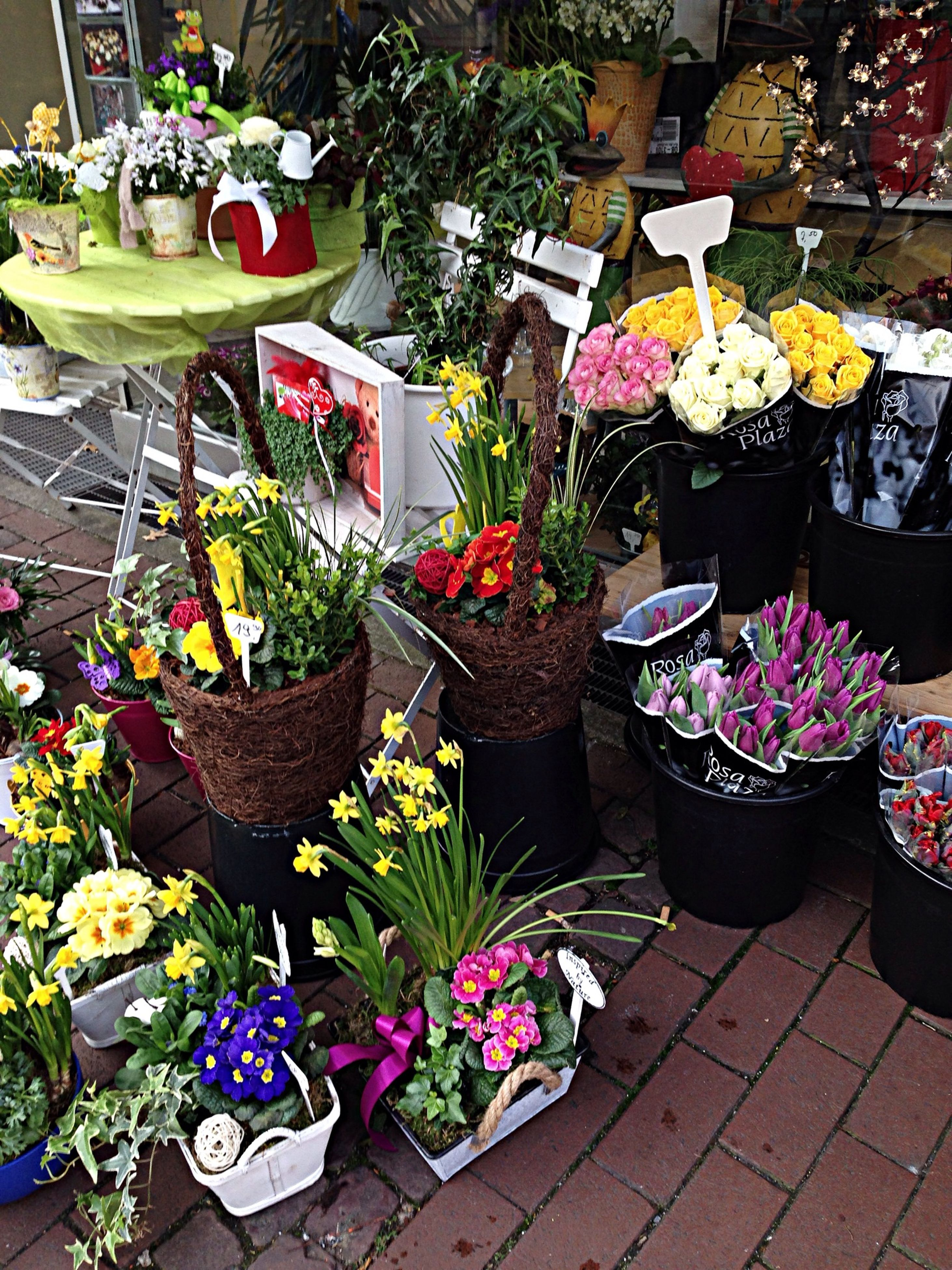 for sale, retail, variation, abundance, choice, large group of objects, market, arrangement, market stall, flower, multi colored, freshness, potted plant, high angle view, display, small business, plant, price tag, collection, sale
