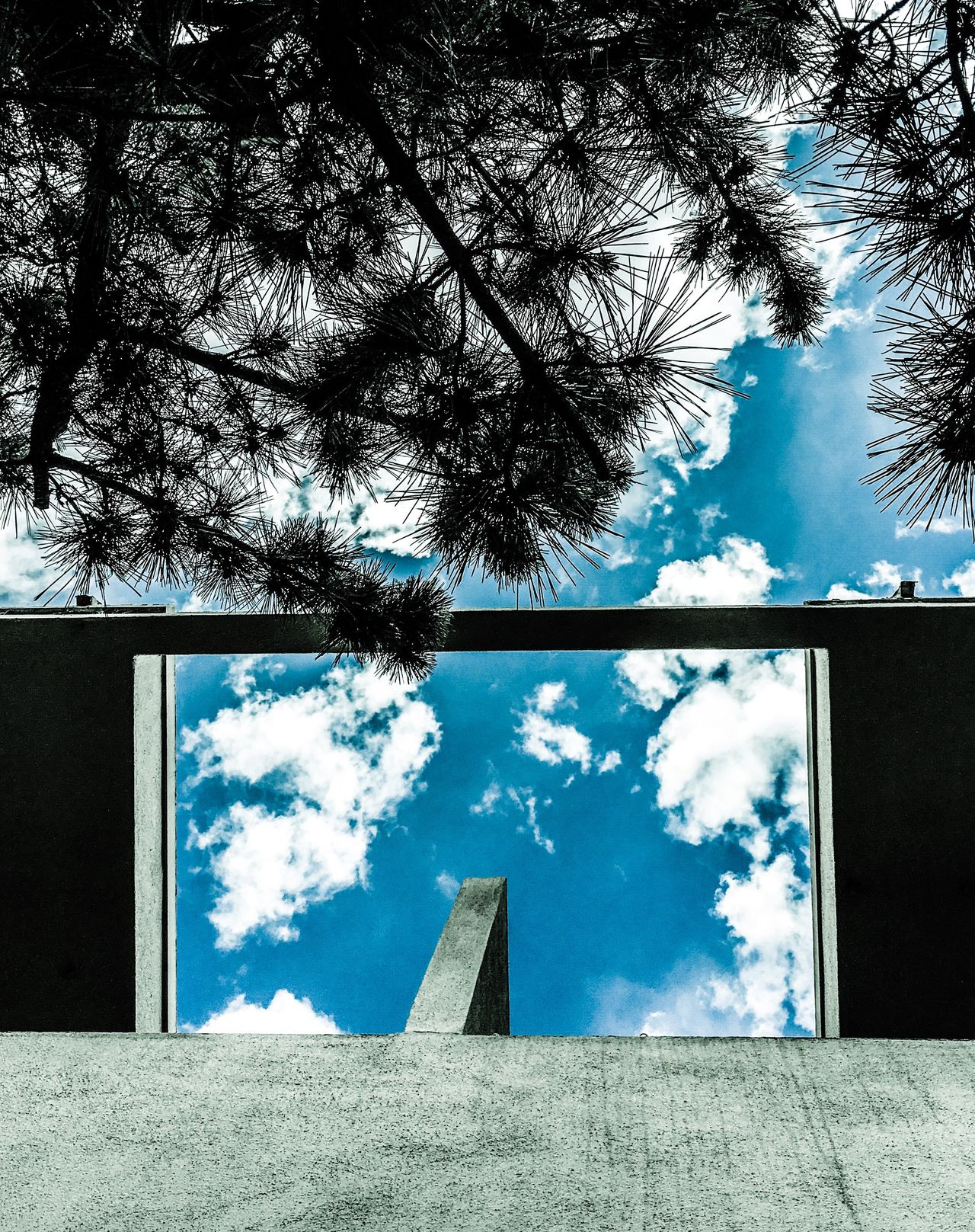 Shapes patterns windows portals architectural world Built Structure Day Architecture Window Sky Tree Building Exterior Cloud - Sky Low Angle View No People Growth Outdoors Nature Windows Sky And Clouds Minimalist Architecture Tranquility Nature Portal To Another World. Illusion Fantasy EyeEmNewHere The Architect - 2016 EyeEm Awards