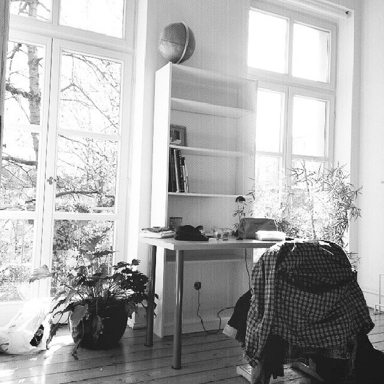 Mon réveil en Allemagne Sundaymorning Sunshine