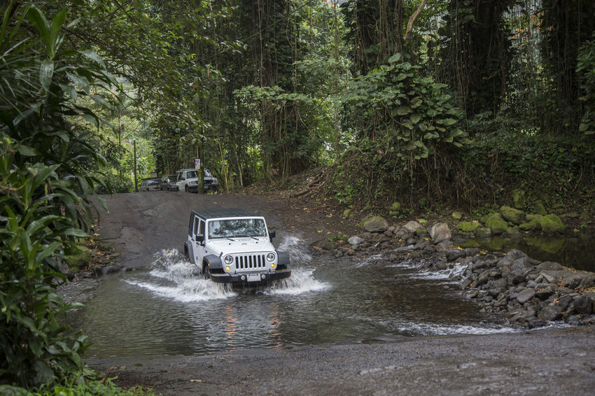 car is crossing river in jungle 4wd 4x4 All Wheel Drive All Wheel Ride Road Transportation Travel Vacations Adventure Bad Road Conditions Car Day Destination Difficult Forest Growth Jungle Lush Green Nature No People Outdoors River Crossing Road Trip Tree Water