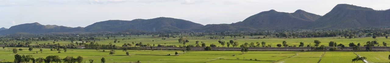 Mountain Hill Farm Farmland Grass Rice Rice Field Panorama Panoramic Panoramic Photography View Landscape Landscape_photography Thailand Agriculture Travel Vacation Voyage Bon Voyage Vacation Tour Tourist
