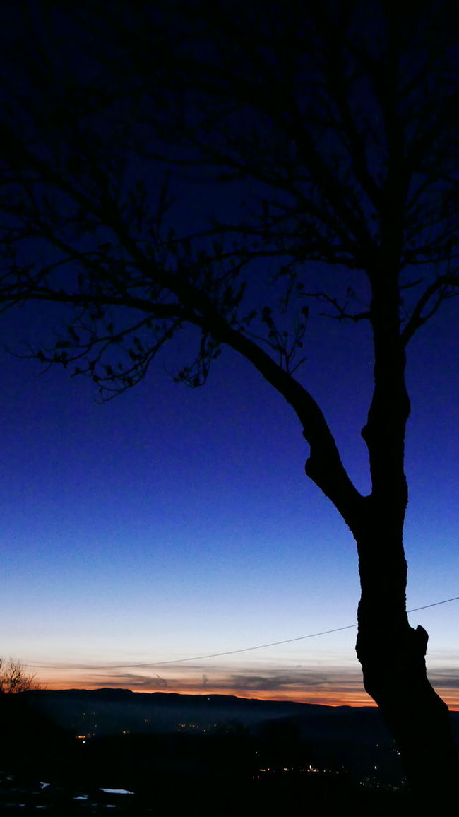 French flag Colors Trees Shadow Bluewhitered Nature Outdoor Photography Night Sky And Clouds