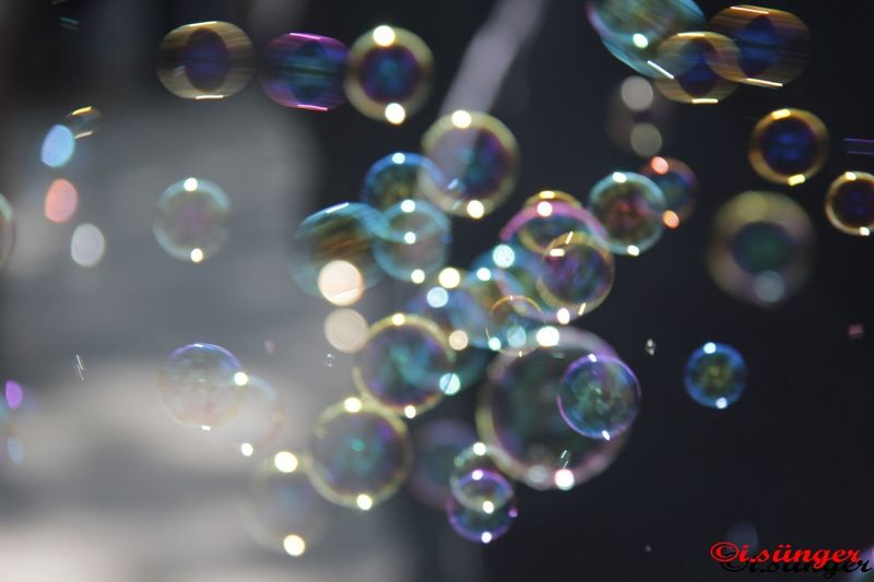 Abstract Baloncuklar Bubble Bubble Wand Close-up Day Defocused Fragility Horizontal Large Group Of Objects Light Effect Mid-air Multi Colored No People Outdoors Soap Sud Tree