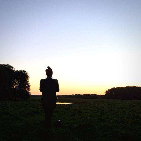 Sunset silhouette Open Edit Copenhagen EyeEm Global Meetup EEA3 EEA3 - Copenhagen Silhouette Sunset Sunrise_sunsets_aroundworld EyeEm Nature Lover EyeEm Best Shots