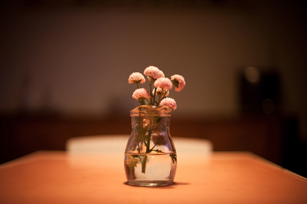 Beautiful stock photos of table, Brown, Bunch Of Flowers, Flower, Fragility