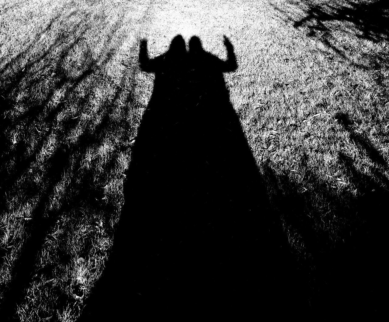 shadow, focus on shadow, silhouette, real people, outdoors, one person, sunlight, day, standing, animal themes, nature, domestic animals, mammal, lifestyles, people