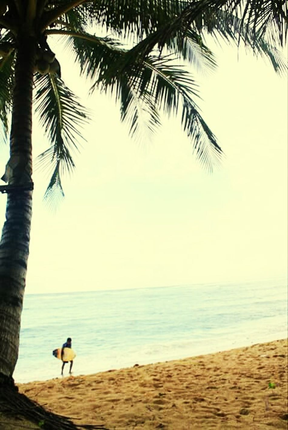 back to land... Surferslife Life Is A Beach Taking Photos Surfing Surfinsiargao Surfingparadise Siargao Island Siargao