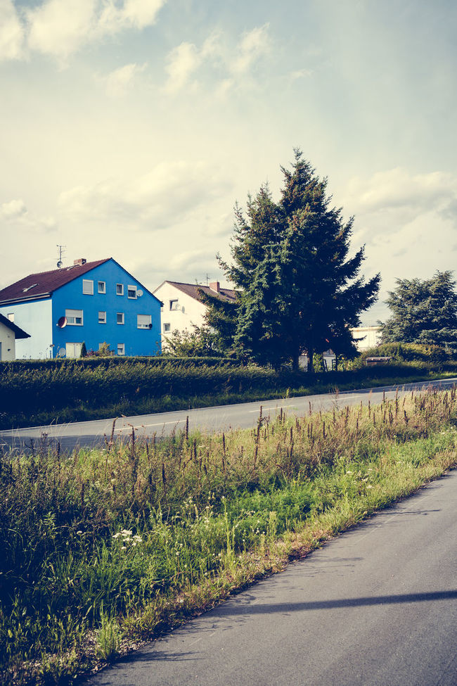 Conifers and a blue House Blue House Cloud Cloud - Sky Conifers Country Road Day Diminishing Perspective Empty Empty Road Field Grass Grassy Green Color Growth Landscape Nature No People Outdoors Plant Road Sky The Way Forward Tranquil Scene Tranquility Vanishing Point