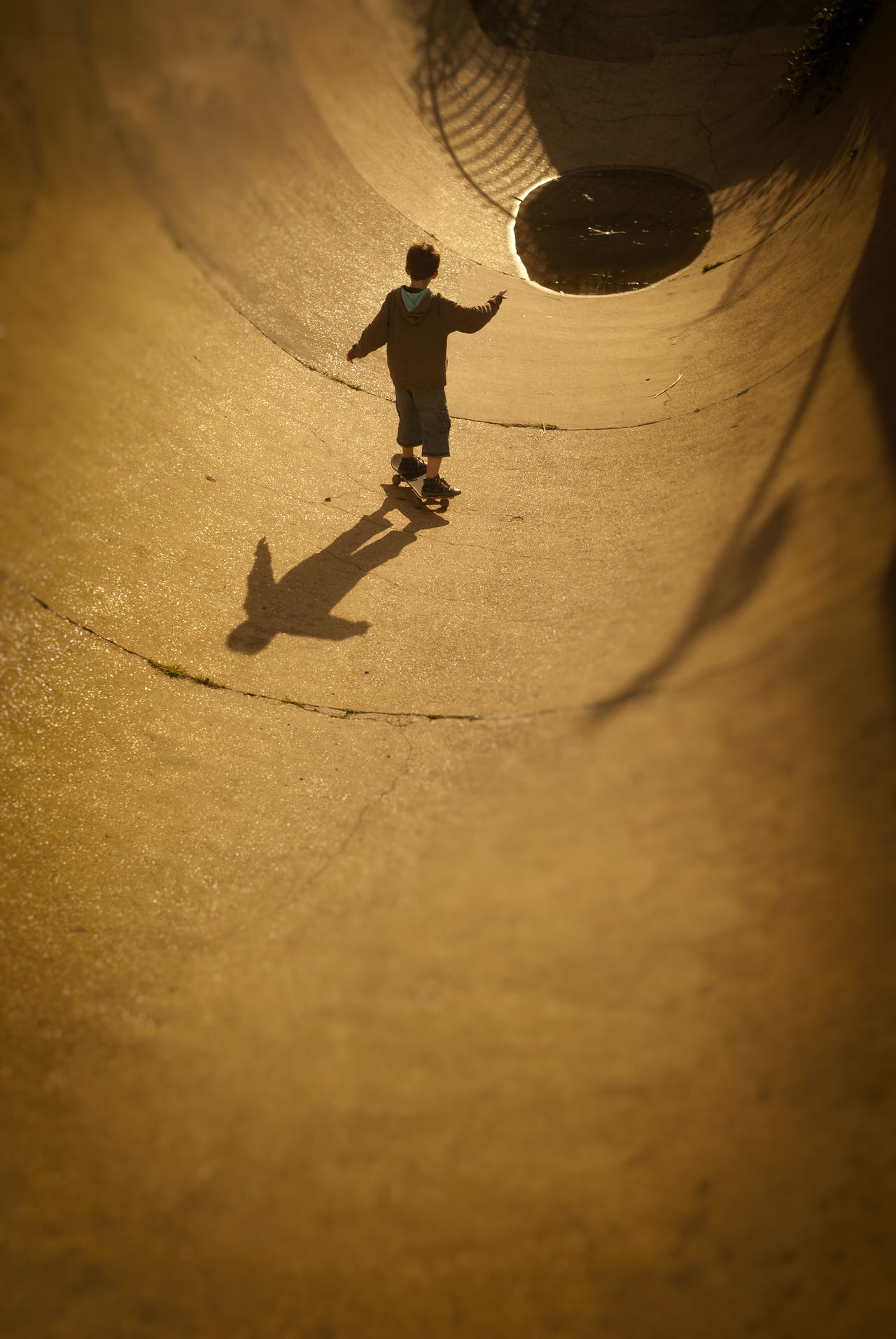 Young Skateboarder at Skate Park Botany Childhood Concrete Day One Person Outdoors Park Puddle Skate Skateboard Skateboarder Skateboarding Skatepark Sunlight