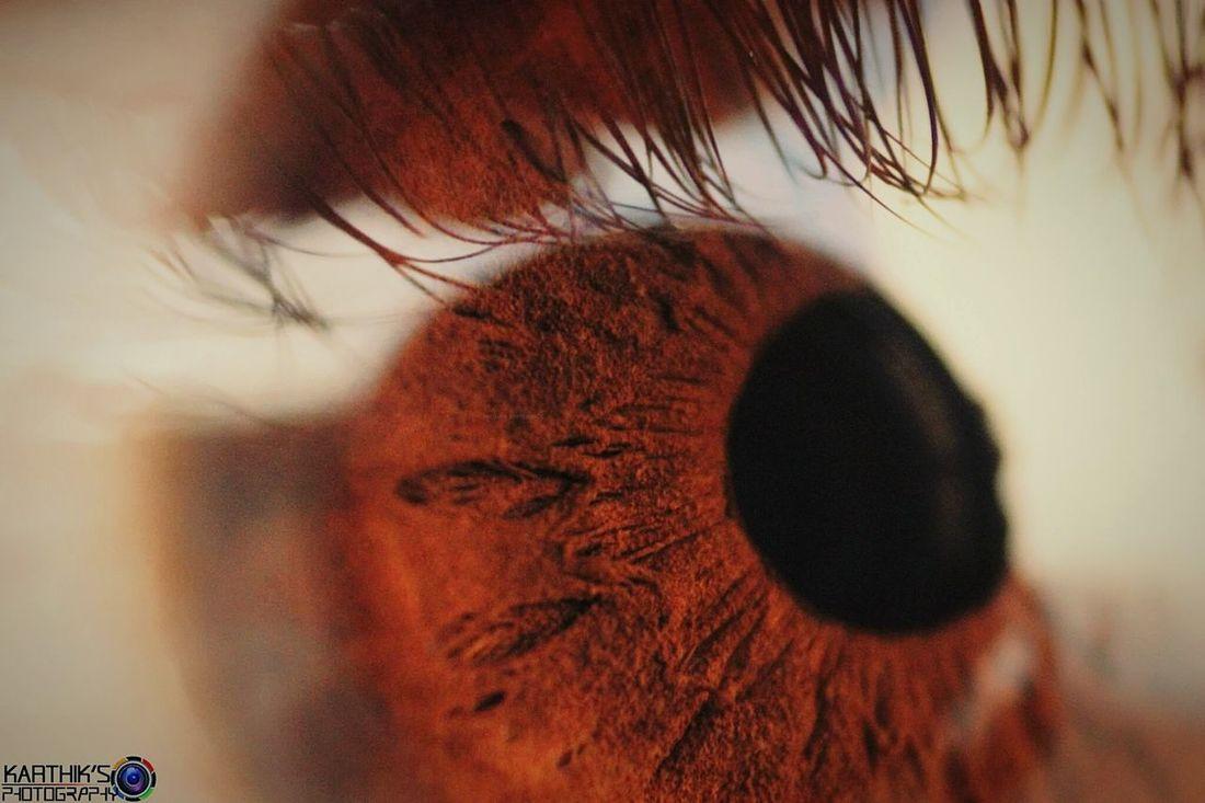 Extremely Closeup Eyes Retina Canonphotography Karthik's_Clickography Followme