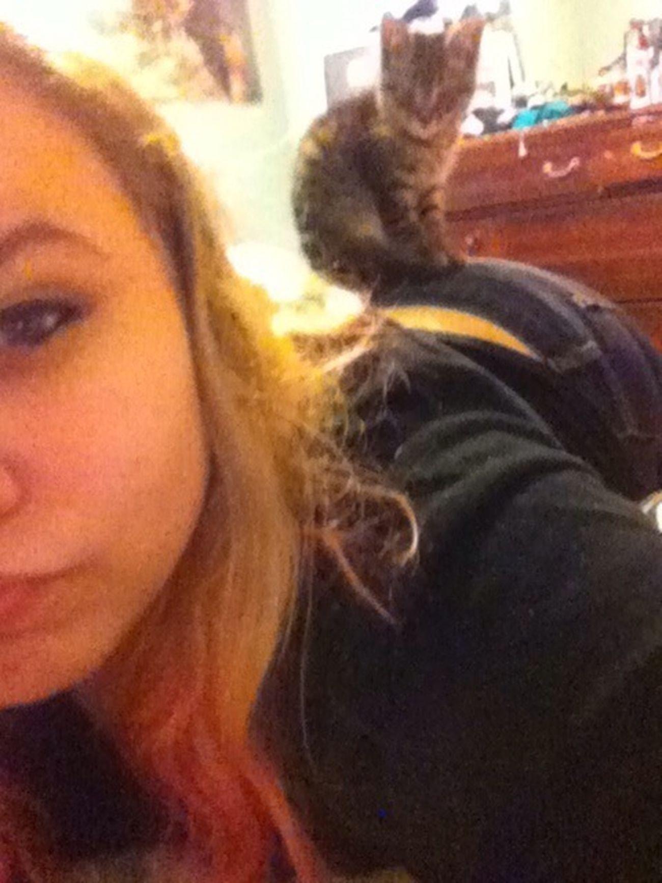 W My Cat