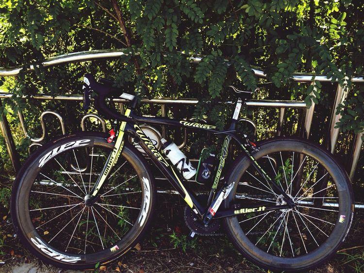 Wilier shimano105 Zipp 404 Roadbike