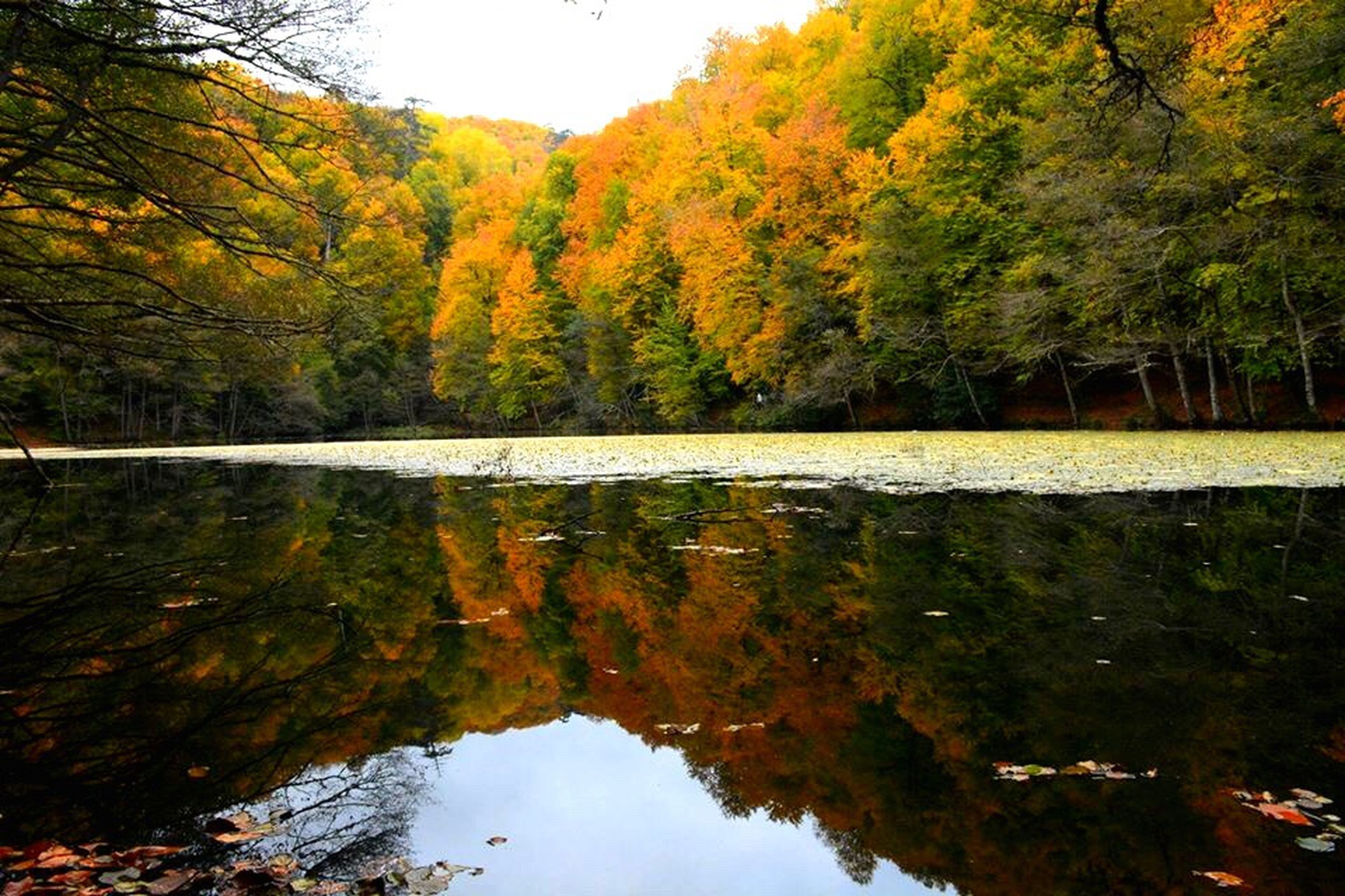 Autumn Reflection Tranquility Nature Natural Condition Day Water Change Beauty In Nature Orange Color Scenics Mountain First Eyeem Photo