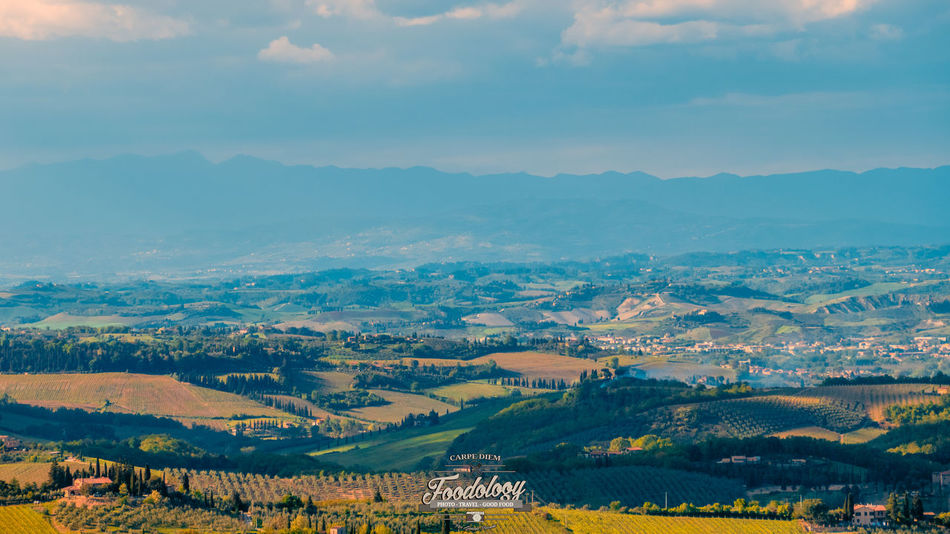 Landscape Scenics Rural Scene Outdoors Nature Sky Travel Destinations Beauty In Nature No People Tuscany Travel Tuscanygram Tuscany Landscape Tuscan Tuscanygramers Tuscanymylove Tuscany View Tuscany Italy Tuscany Countryside Toscana Toscana_amoremio