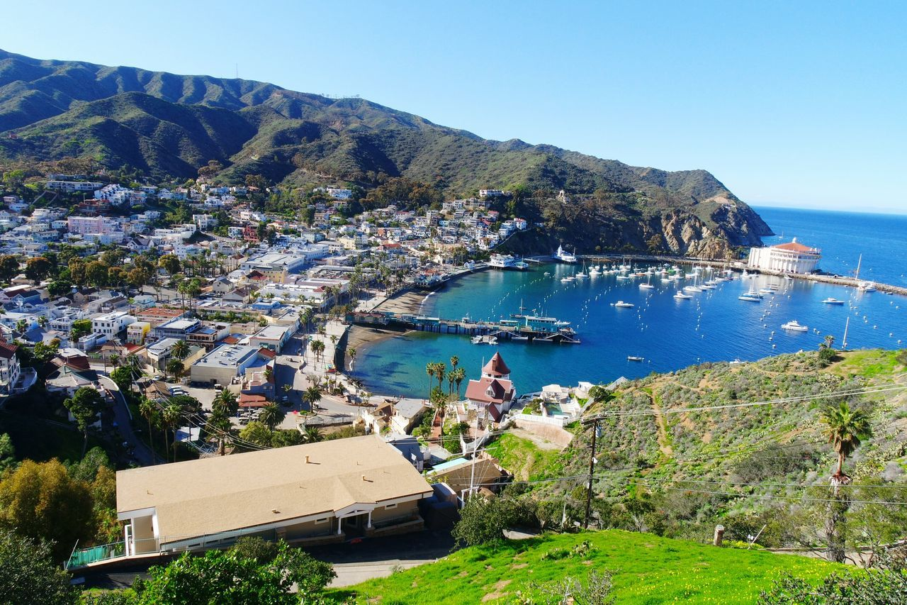 California dreamin' Catalina Island  San Diego Island California Sunny Skies Boats Harbour Daytime Summer Feeling Mountains Hills Houses Port Neighborhood Map