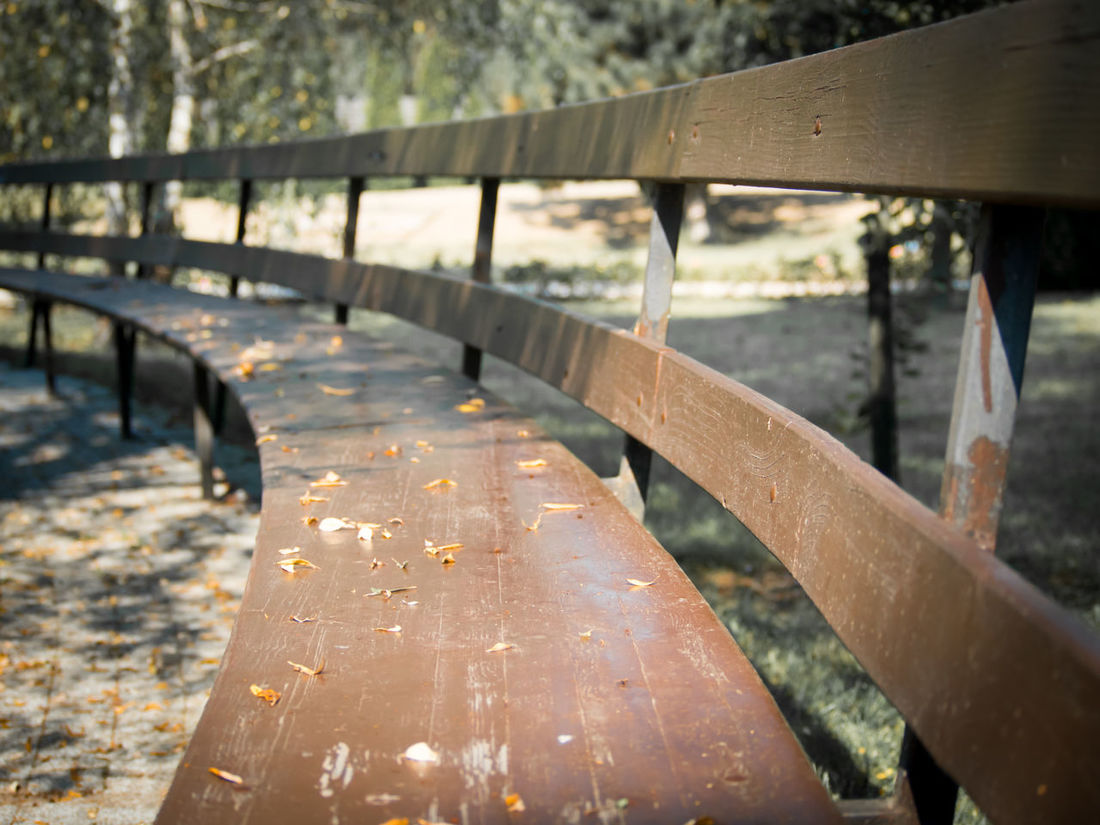 Architecture Bench Bench Art Benches Built Structure Calm Calm Moment Calmness Connection Endless Infinité Long Long Bench Outdoors Peace And Quiet Peaceful Perspective Quiet Place  Seat Seats Seats Row Wood Architecture Wood Art Wood Benches Wood Seat