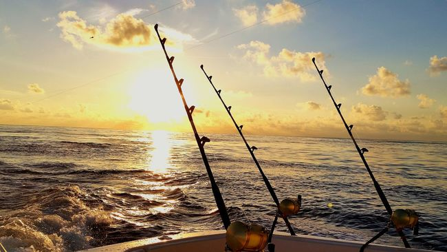 Gulf Of Mexico In The Gulf Of Mexico Sportfishing Marlin Fishing Gulf Life Enjoying The Sunrise Sunrise Saltlife Saltwater Bluewaters