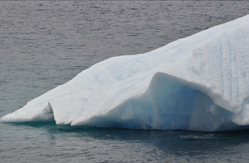 IceBergs .... Newfoundland, Canada Ice Bergs 2016😍 10,000 Year Old Ice Berg Ice Mothernature Taking Photos Hanging Out Check This Out Designs And Lines Ocean View Blue Water Oceanview Natures Beauty...