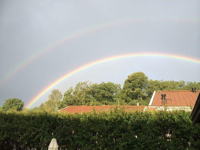 Rainbow Rain Sweden Sun