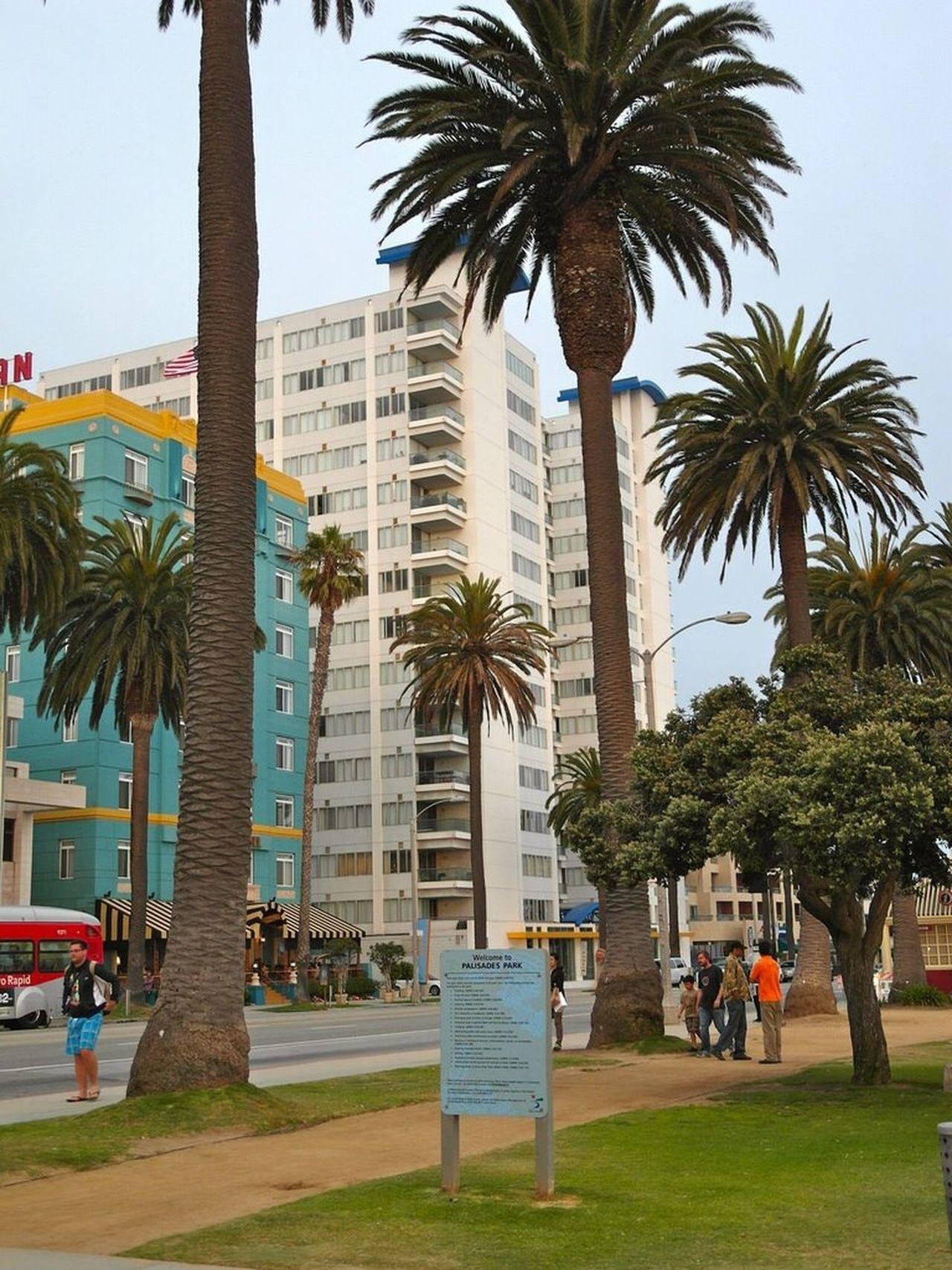 Beautiful stock photos of las vegas, Architecture, Building Exterior, Built Structure, City