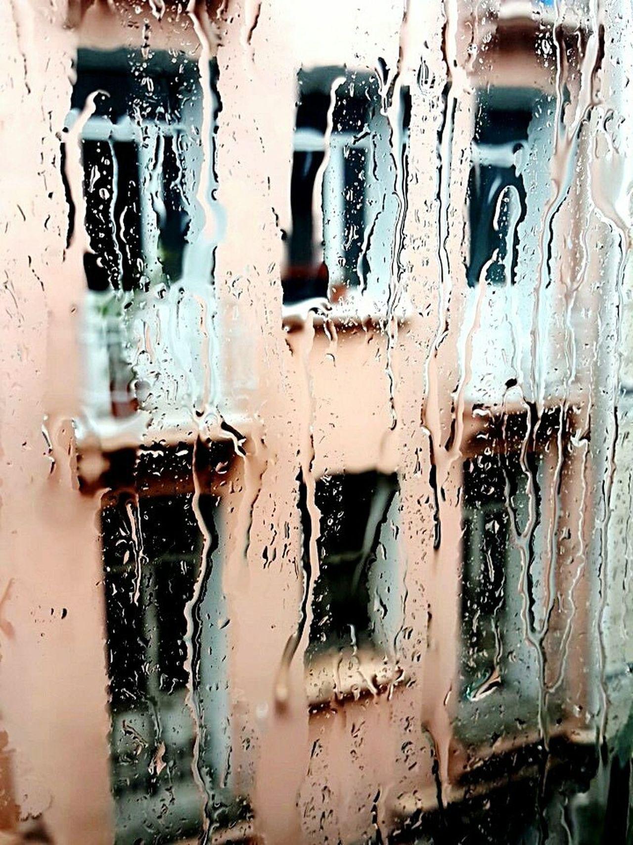 Стамбул дождивдекабре дождивСтамбуле декабрь2014