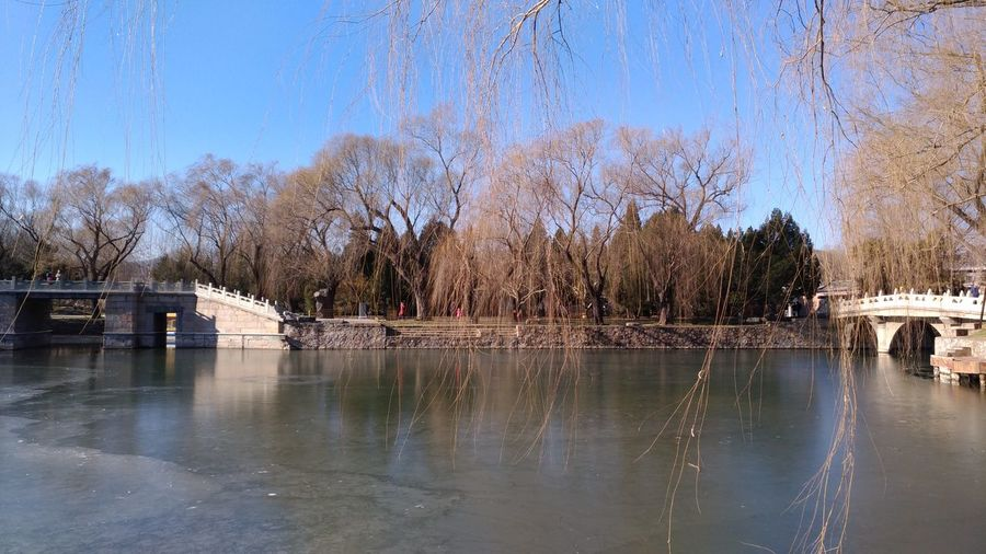 Winter Lake Lake View China Photos China Summer Place In Beijing Frozen EyeEm Selects Beauty In Nature Nature Reflection Water