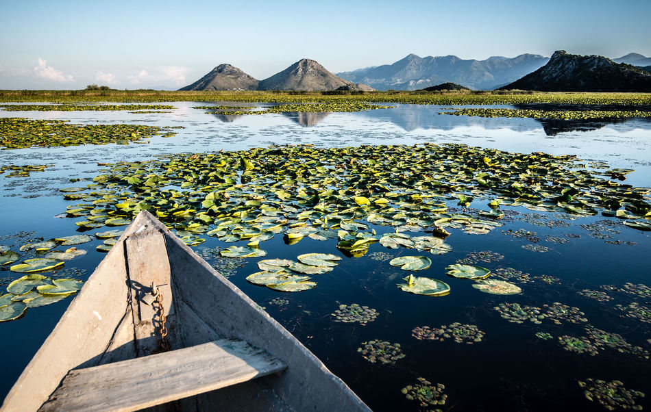 Beauty In Nature Floating On Water Journey Mountain Mountain Range Natural Beauty Nature Nature Photography Naturelovers No People Outdoors Reflection Skadar Skadar Lake, Montenegro Sky Vacations Water Water Surface First Eyeem Photo