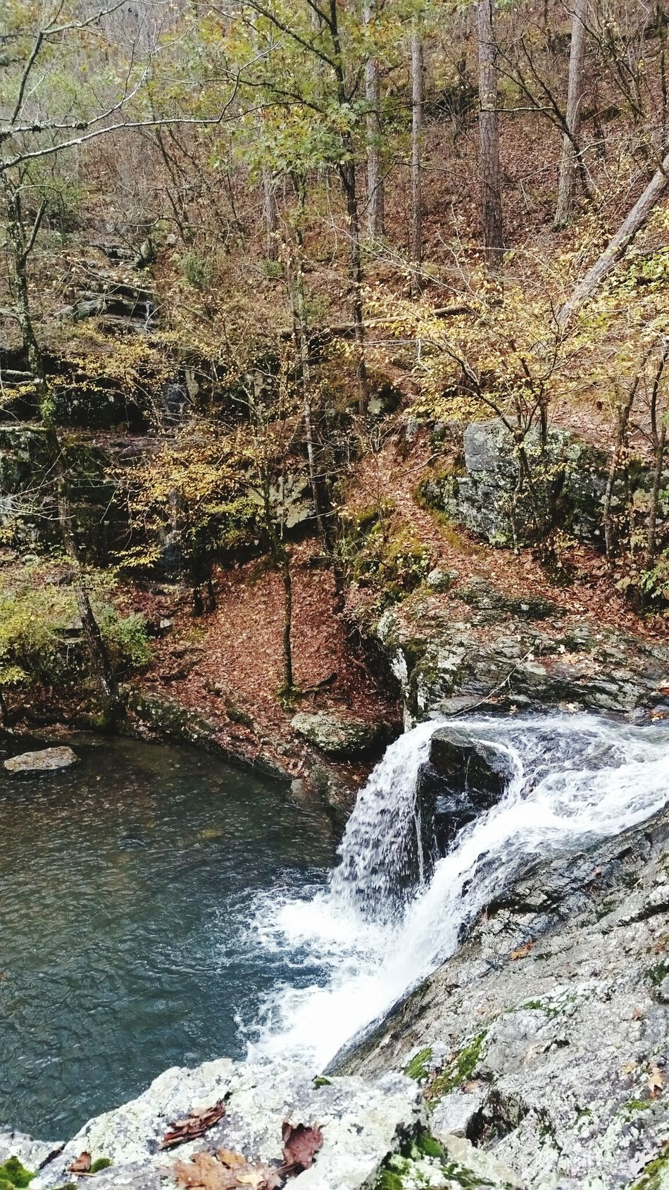 The Great Outdoors With Adobe Lake Catherine Arkansas Hanging Out Taking Photos Check This Out Hello World Enjoying Life Outdoors Relaxing Outdoor Photography Water Stream Creek Waterfall