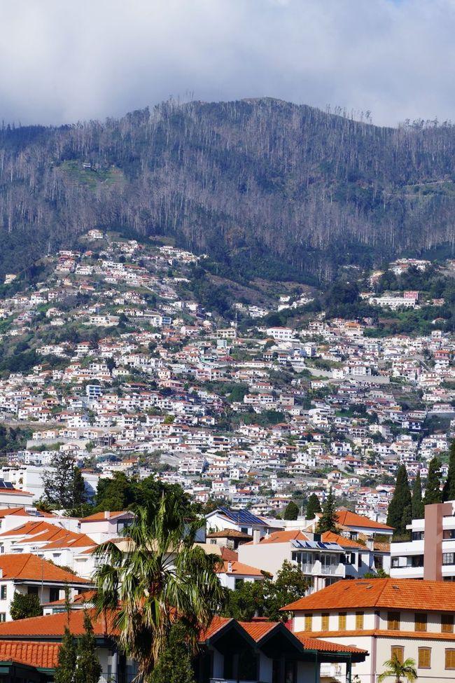 Madeira Landscape Landscape_Collection Landscape_photography Landscapes Landscape_photography Mountains Hills
