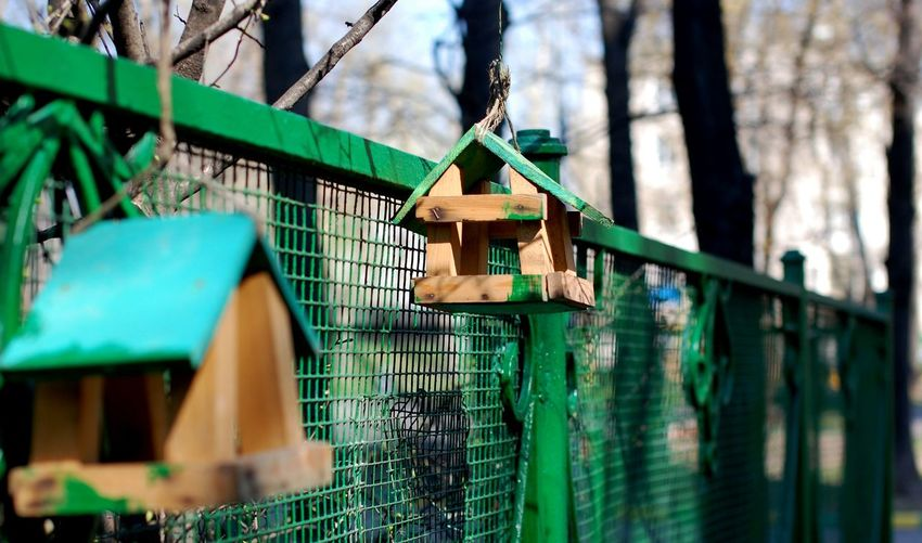 Bird house Bird Feeder Bird House Birdhouse Feeding Trough Green Hanging On The Fence Spring Trough Wood
