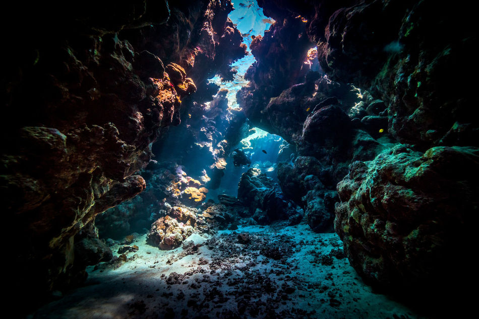 red sea Adventure Aquatic Sport Beatiful Nature Beauty In Nature Cave Escape Explorer Extreme Adventures Geology Light And Shadow Nature No People Ocean Outdoors Physical Geography RedSea Rock - Object Rock Formation Scubadiving Sea Solo Traveller Travel Photography Underwater Unusual Beauty Water