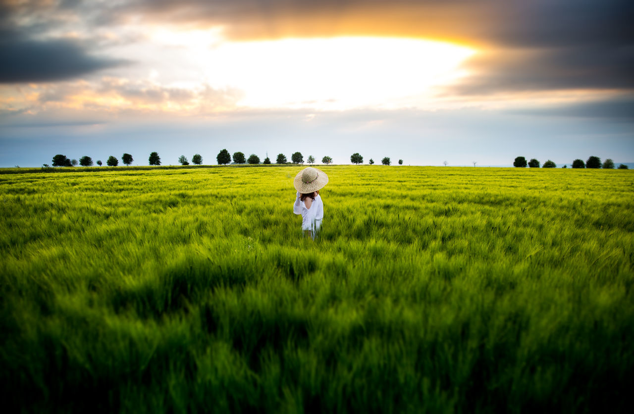 Rural Scene Field Day Nature Landscape Sunset Flower Sky Outdoors Beauty In Nature Paradise People Daydream
