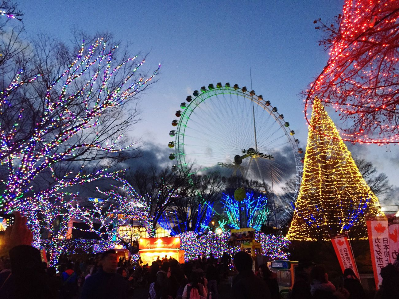 Christmas Illumination Amusementpark Japan Light Ferris Wheel クリスマス イルミネーション 遊園地 観覧車 よみうりランド