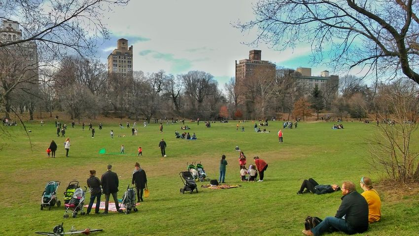 Park Brooklyn NYC March 2016 Lg Lancet