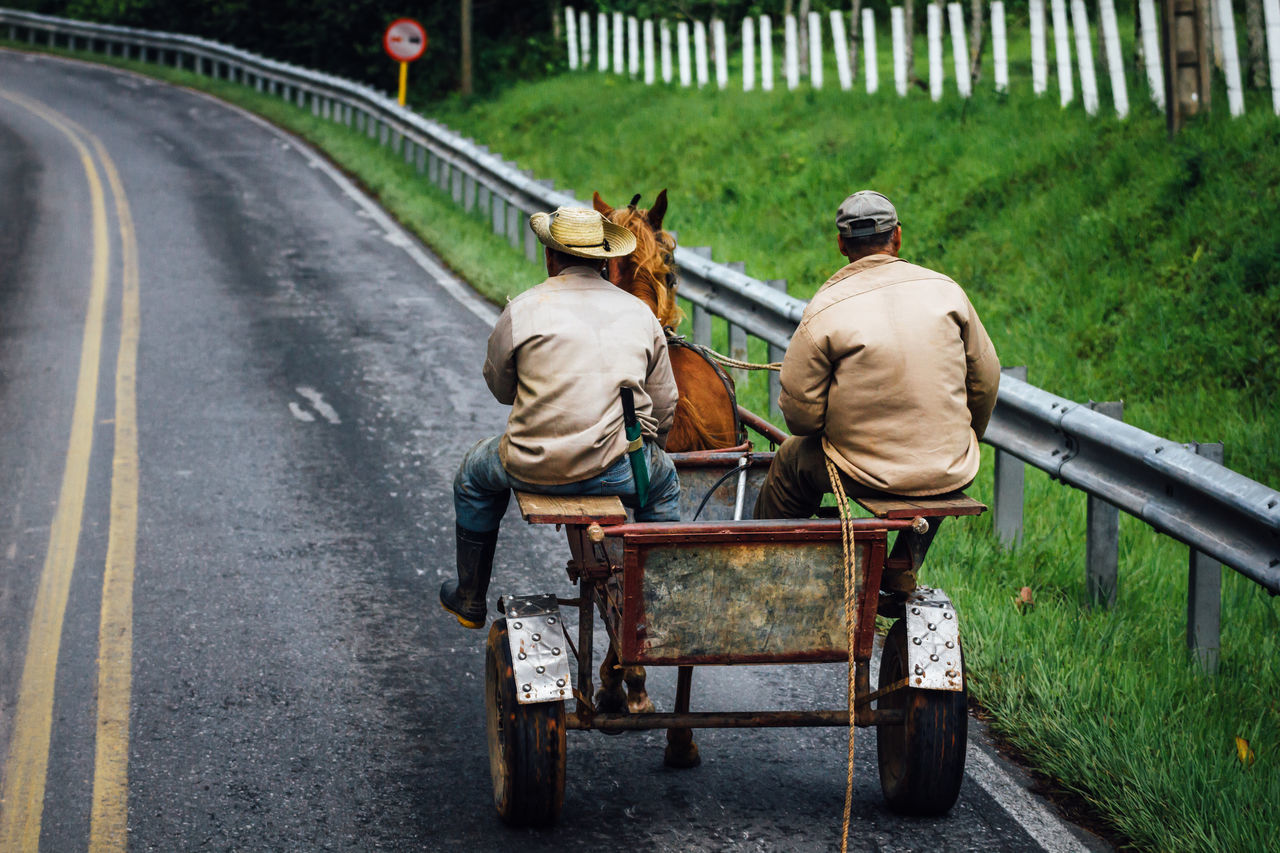 Carriage Carriage House Cuba Collection Cuban Cuban Life From My Point Of View Horse Outdoors Real People Rear View Road Rural Rural Scene Togetherness Transportation Travel Two People Vanishing Point Fresh On Market 2017