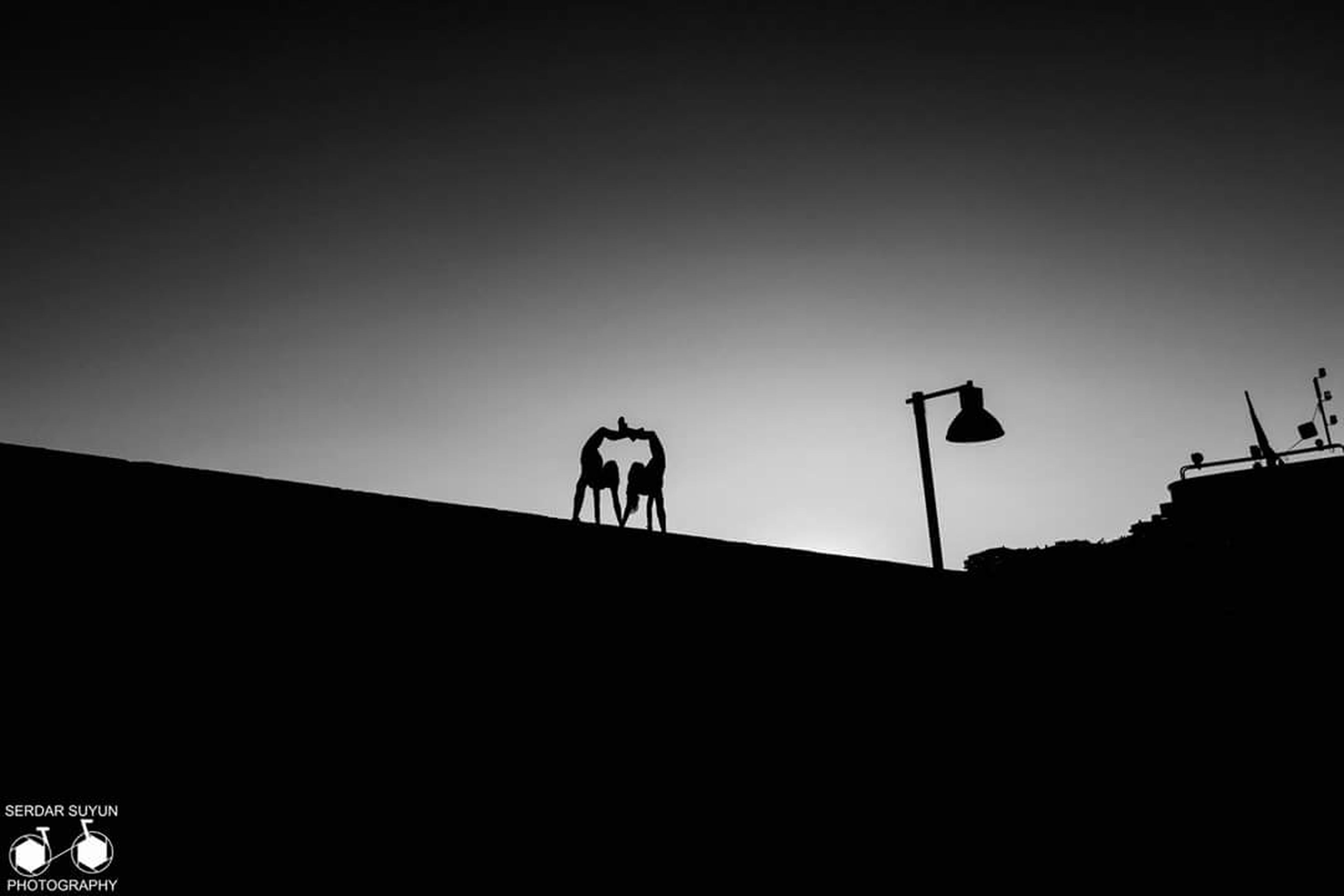silhouette, clear sky, copy space, low angle view, dark, outline, outdoors, high section, solitude