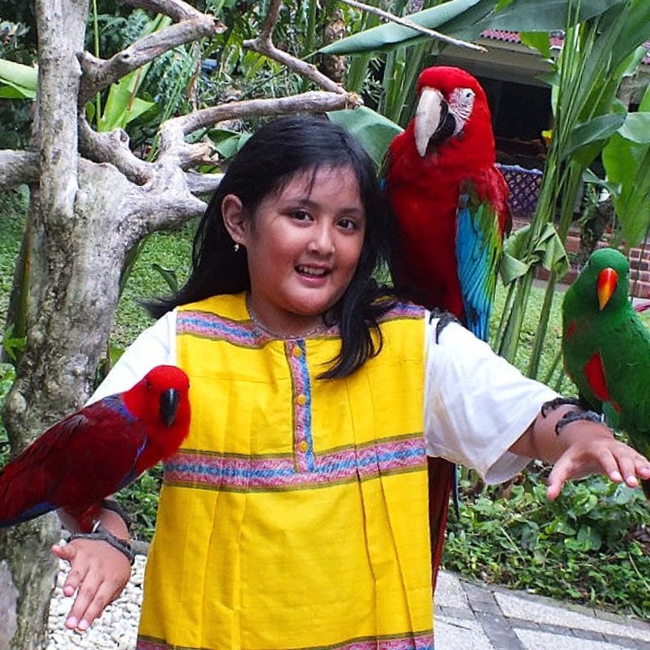 Cita-citanya pengen jadi dokter hewan yg punya kebun binatang sendiri, dari kecil udah suka sama semua hewan, dari serangga, sampai gajah.. kemaren baru melihara tokek hehehe anak cantikku ini Birdpark Liburan INDONESIA Baliisland