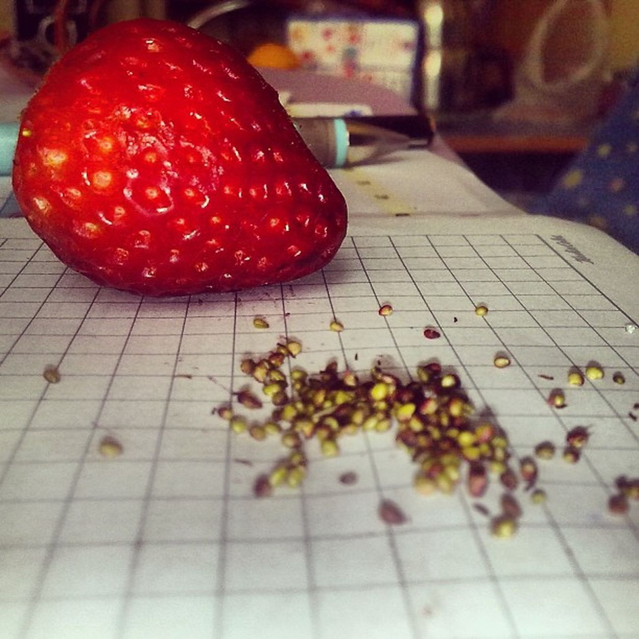 Strawberry Love Like4like Issiz red instagood instapic instalike