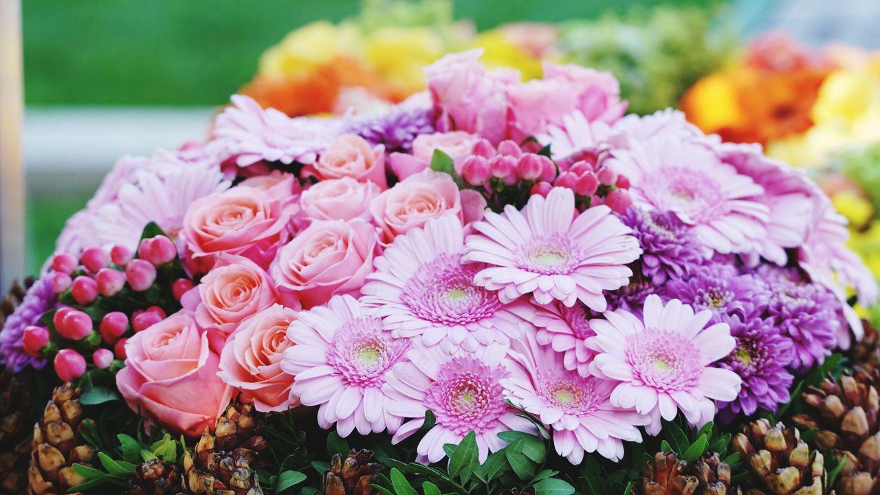 EyeEm Selects Flower Head No People Grabschmuck Blumenschmuck Mit Tannenzapfen Grabgestaltung Blumendank
